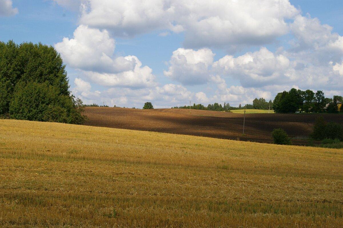 Mullaviljakuse parandamiseks on mitmeid võimalusi