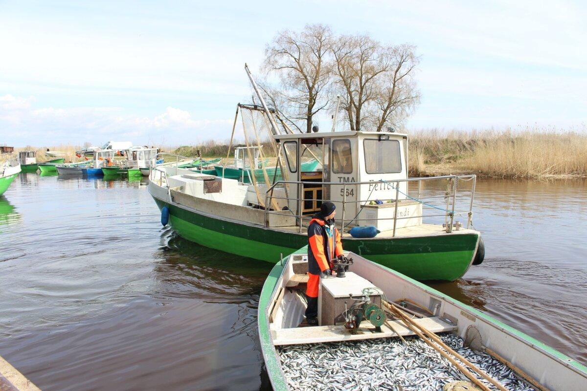Läänemere kalandusfoorum keskendub rannakalandusele