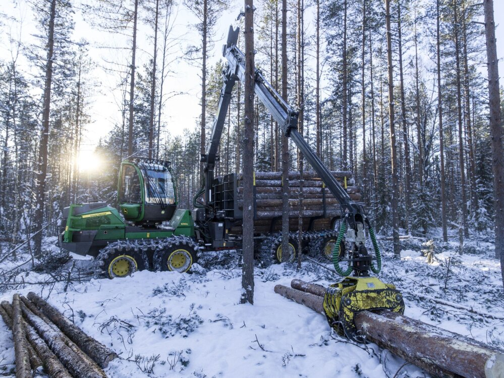 02436d3abbd Kõrged hinnad puiduturul pakuvad väljakutset metsamasinamüüjatele