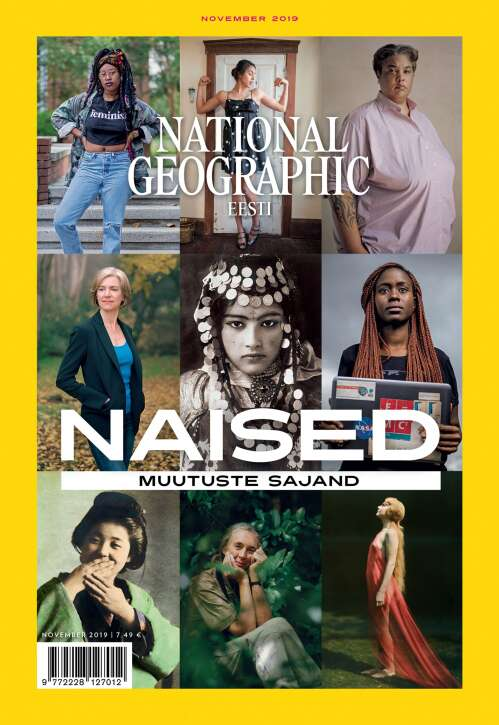 National Geographic Eesti, 11/2019