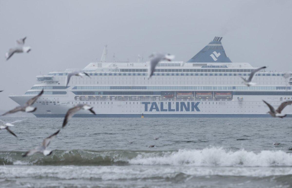Somaallased edestavad eestlasi Soome kodakondsuse saajate seas
